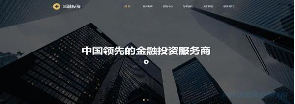 金融投资网站模板 T9909.jpg